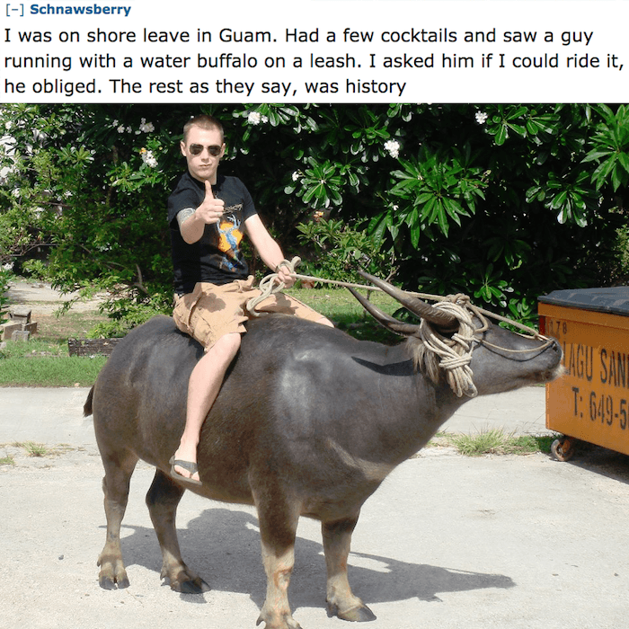 Water Bison Ride