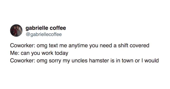 Coworkers Hamster