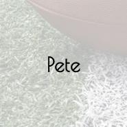 superbowl-pete