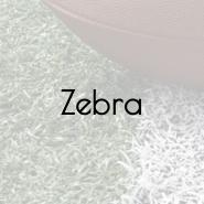 superbowl-zebra